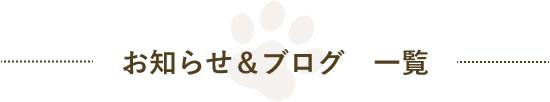 お知らせ&ブログ一覧